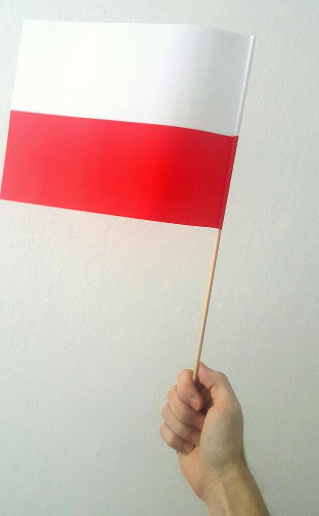 choragiewki flaga Polski